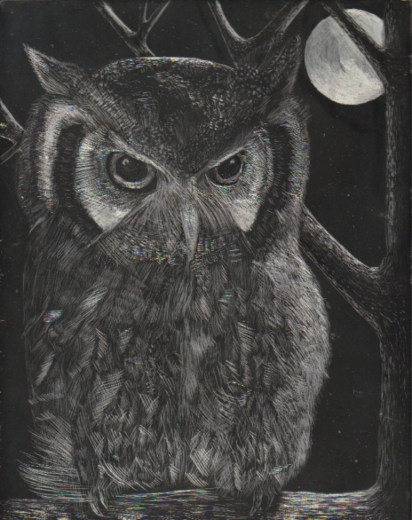 Silvery Owl by SunStorm