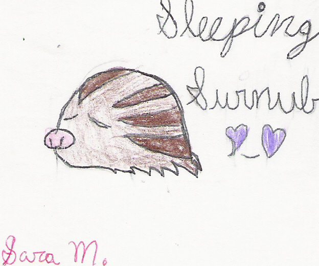 Cute Little Swinub! by Symphoniagirl12