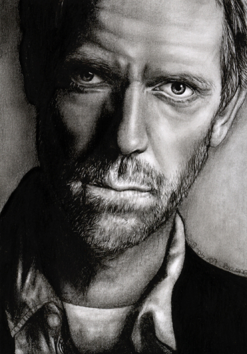 Hugh Laurie 2 by sas