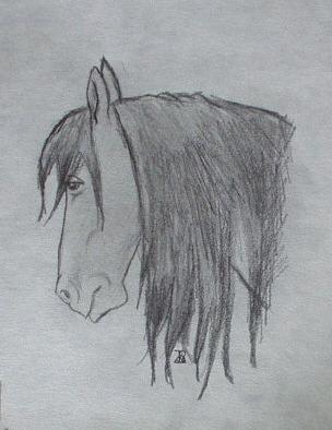 My Horse Rebel by sili