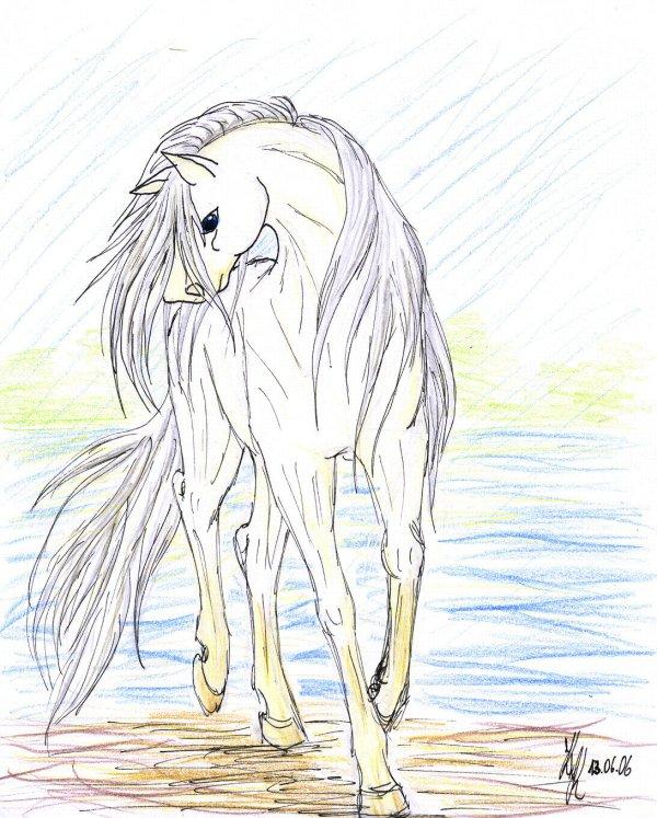 Enju by silver_dragicorn