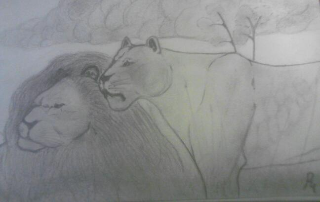 lions by smokeybandit1