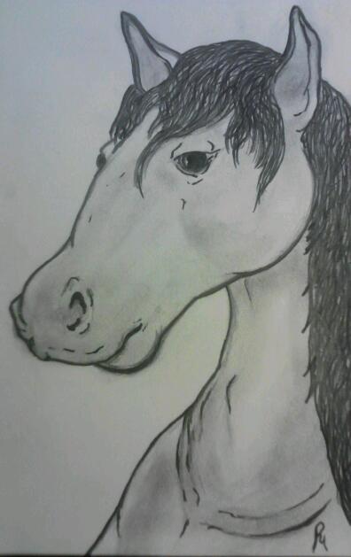 horse (inked) by smokeybandit1