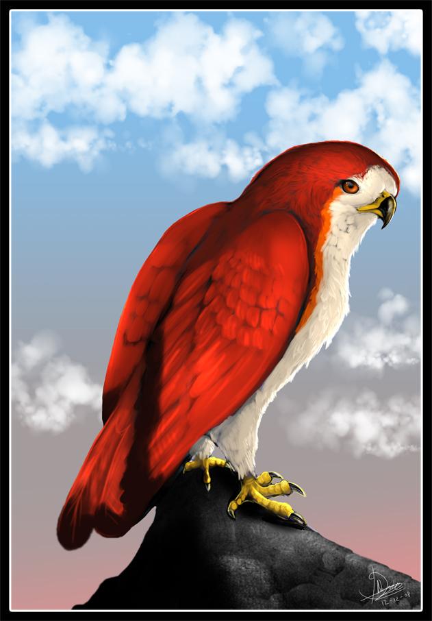 Redbuzzard by Taiga
