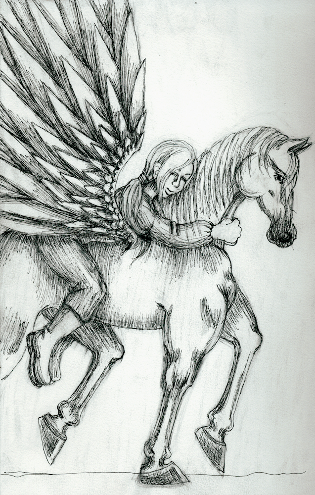 Pegasus and Rider by TheIrishFay