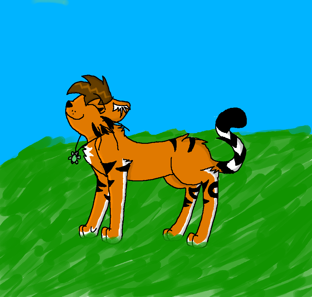 Tora the tiger by ToraDaTiger