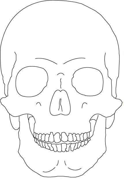 Skull Outlines Vector Vector Art & Graphics | freevector.com |Skull Outline Drawings