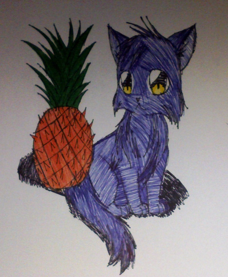 Pheral Cat And A Pineapple by velagirls10