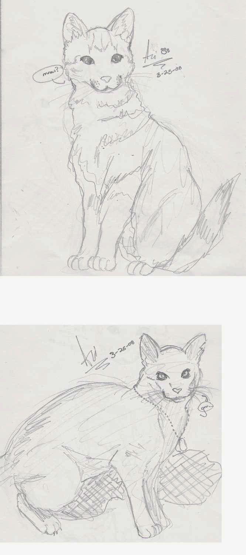 Kitties! by White_fox_of_jade