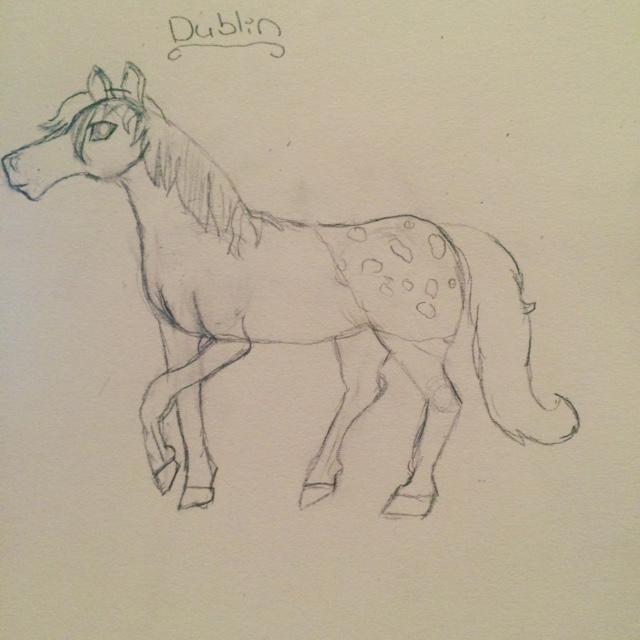 Dublin the Horse! by WildDreams46