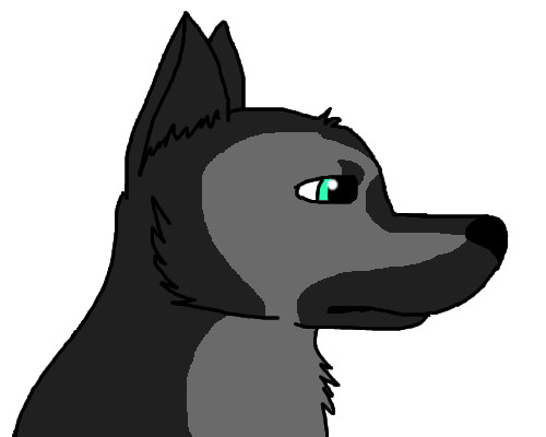 random German Shepherd by WolfGirl900