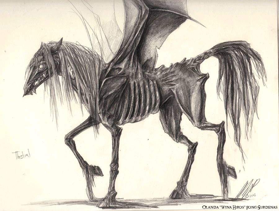 (concept art) Thestral (HP) by WynaHIros