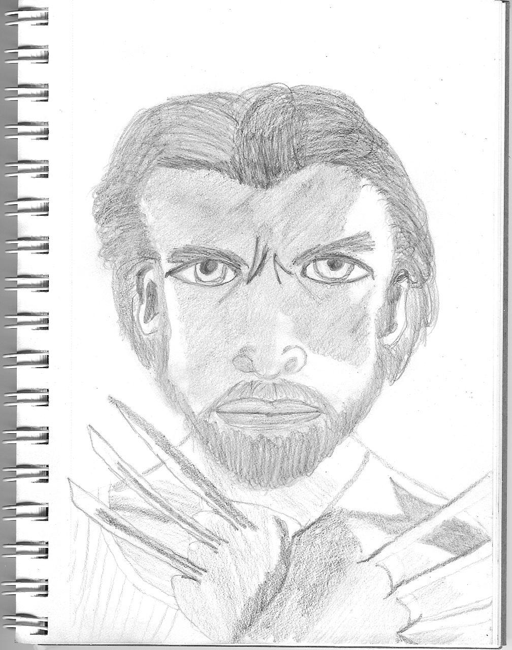 Wolverine by wandakff