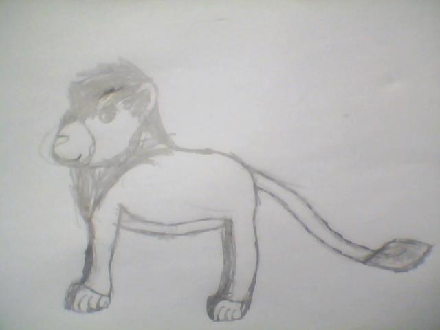 Lion Sketch by xAmerilandx