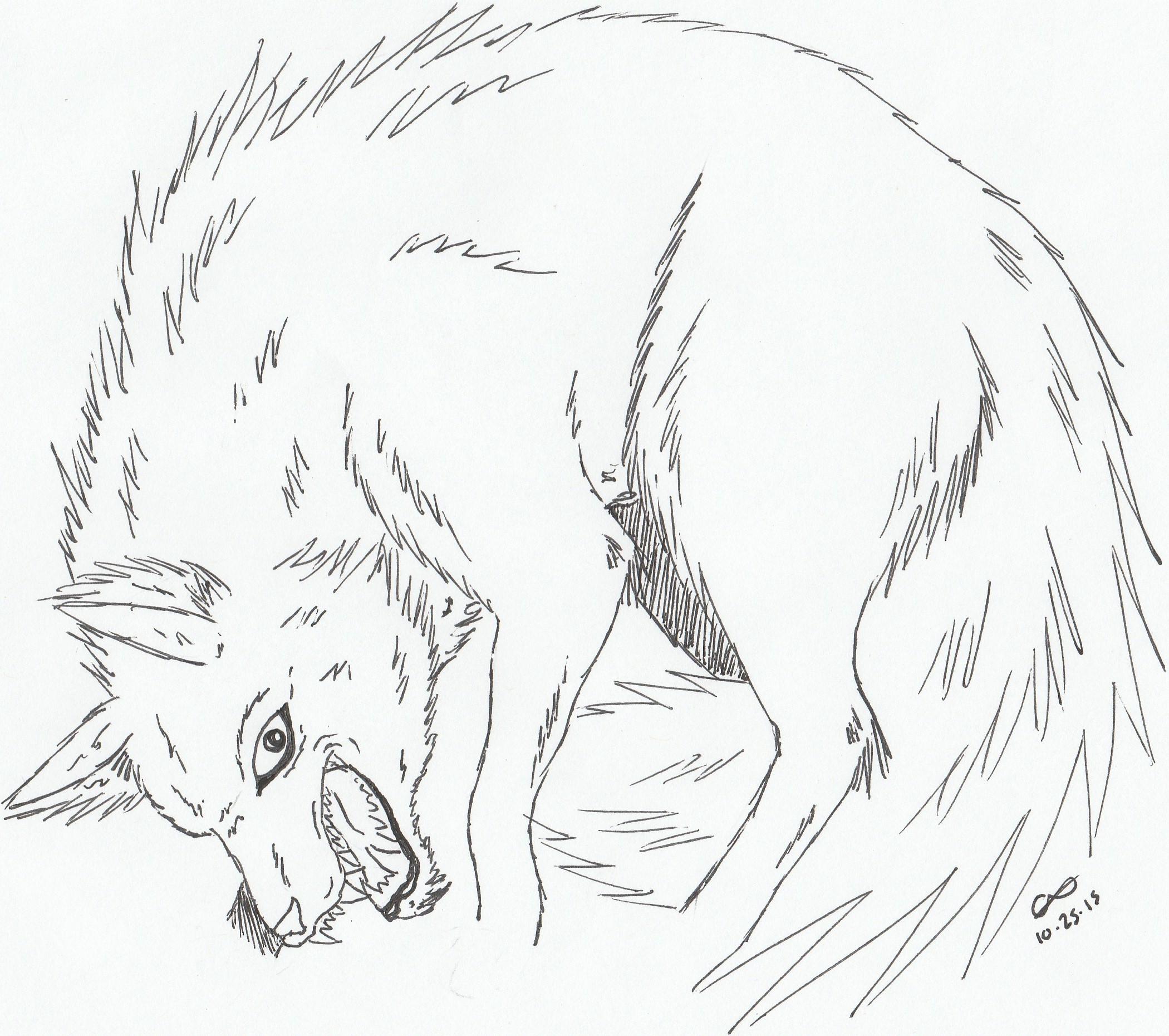 Princess Mononoke Wolf by xNayamashiixDarklingx