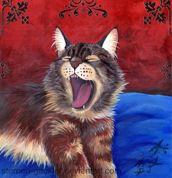 Sleepy Maine Coon by YlangYlang