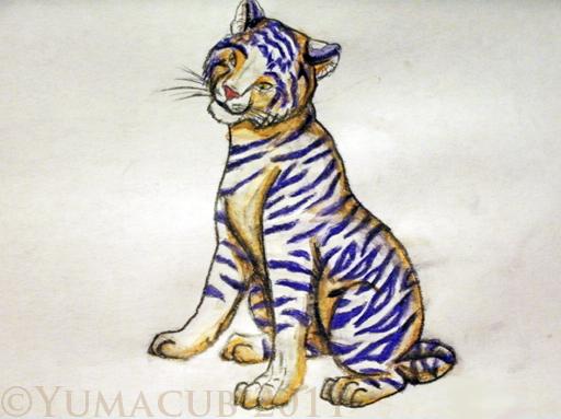 Tigress by Yumacub